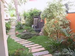 san francisco backyard landscaping ideas landscape tropical with