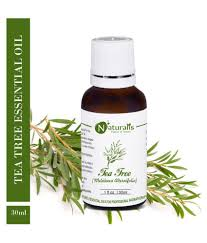 NATURALIS 100% Pure Tea Tree Essential Oil 30 ML Tea Tree Organic Essential Oil 10 Ml Believe Merch Coupon Codes Refresh Eye Drops Walmart Coupons Free 2 Best Selling Gifts Promotional Melaleuca Code Everglades Invasive Species Captain Mitchs Grocery For Couponing Kidcam Promo 2019 Rogaine Discount Waitr May Victoria Secret 30 Off J Spencer Tulsa Peaches Petals April 2018 Subscription Box Review Coupon Smartsource 81218 Oster Retail Partners Android Apk Download Joseph Turner Timpanogos Storytelling Festival
