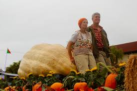 Hmb Pumpkin Festival 2015 by Oh My Gourd Half Moon Bay Festival Delivers More Than Massive