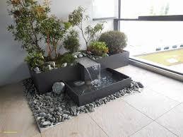 4 springbrunnen wohnzimmer in 2021 plants bonsai indoor