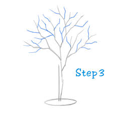 HowToDraw Tree 3