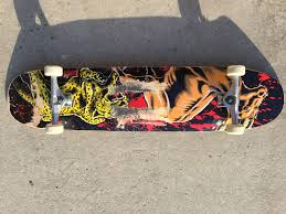 Skateboarding Is My Lifetime Sport: 2015