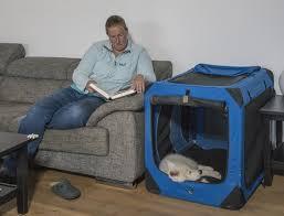 ein home in home die hundebox martin rütter dogs