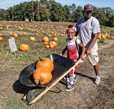 Pumpkin Picking Richmond by Photos From October 26th 28th Richmond Free Press Serving The