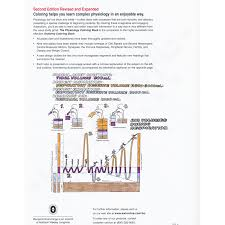 Product Info Php Unique Physiology Coloring Book