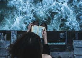 Book And Wild Sea