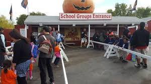 Pumpkin Farms In Channahon Illinois by Fall Fun Pumpkin Patches Around Chicago Upparent