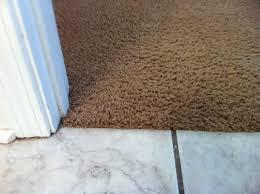 ceramic tile to carpet transition new basement and tile