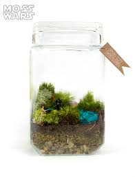 Star Wars Aquarium Decorations by Insanely Awesome Geek Themed Terrariums From Jacie Anderson