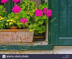 Rustic Window And Flower Box In Town Of Kaltern Northern Italy