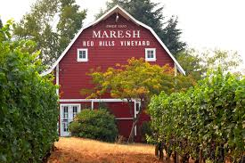 This Oregon Wine Tasting Room Is In A Beautiful Barn Wine News Orlando Blog Wine Cellos Corner Foodie Photos Food Calendar 75 Best Virginia Vineyards And Images On Pinterest Vineyard Styles Discount Wines Free Shipping Alira Sparkling Galleano Winery Wedding Barn Rustic Vintage Inspiration What The Heck Is Natural Heres A Taste Salt Npr This Beautiful In Iowa Actually Youll Want Pairings Matching