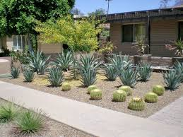Landscape Design Phoenix Barrett Architects AZ 11 Architect ... Backyards Modern High Resolution Image Hall Design Backyard Invigorating Black Lava Rock Plus Gallery In Landscaping Home Daves Landscape Services Decor Tips With Flagstone Pavers And Flower Design Suggestsmagic For Depot Ideas Deer Fencing Lowes 17733 Inspiring Photo Album Unique Eager Decorate Awesome Cheap Hot Exterior Small Gardens The Garden Ipirations Cool Landscaping Ideas For Small Gardens Archives Seg2011com