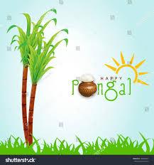 Pongal Sugar Cane Clipart 5