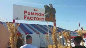 Pumpkin Patch Fresno Ca Hours by The Pumpkin Factory Pumpkin Patch In Corona California Youtube