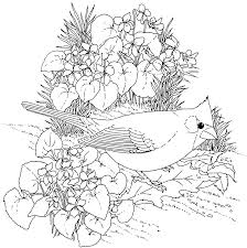 Free Printable Adult Flower Coloring Pages 1