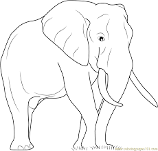 Elephant The Big Animal Coloring Page