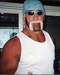 Halloween Havoc 1997 Hogan Fan by New World Order Professional Wrestling Wikipedia