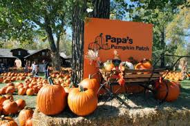 Closest Pumpkin Patch To Marietta Ga by 10 Things To Get Excited For This October