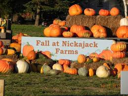 North Lawrence Pumpkin Patch by Nickajack Farms Agricultural Entertainment Farm Tours Field