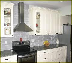 light gray glass subway tile home design ideas