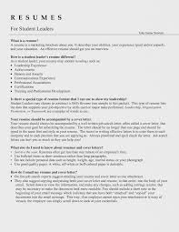 Leadership Resume Words Interesting Skills On Examples For Team ...