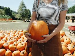Half Moon Bay Pumpkin Patches 2015 by Senior Pumpkin Patch Photos Bing Images Fall Pumpkin Patch