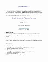Chef Resume Objective Examples
