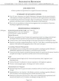 Continuity Risk Managnment Resume Example 1 For Management Position Executive