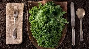 comment cuisiner du chou comment cuisiner le chou kale nos meilleures astuces