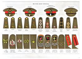 Military Awards And Decorations Records by R Askhistorians Guide On Finding Family Military Service Records