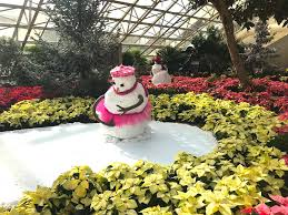 Snow Days at the Foellinger Freimann Botanical Conservatory Is The