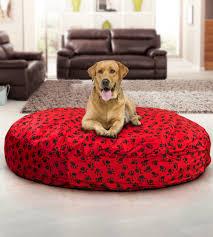 Dog Beds Large