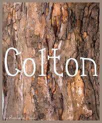 71 Best Rustic Country Boys Names Images On Pinterest