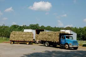 Outstanding Dreams Alpaca Farm: Phil Liske Hay & Straw Hay For Sale In Boon Michigan Boonville Map Outstanding Dreams Alpaca Farm Phil Liske Straw Richs Cnection Peterbilt 379 At Truckin Kids 2013 Youtube Bruckners Bruckner Truck Sales Lorry Stock Photos Images Alamy Mitsubishi Raider Wikipedia For Lubbock Tx Freightliner Western Star Barmedman Motors Cars Sale In Riverina New South Wales On Economy Mfg Dennis Farms Equipment Auction The Wendt Group Inc Land And