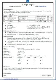Excellent One Page Resume Sample Of Computer Science Engineer