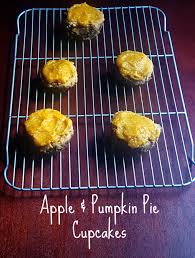 Organic Pumpkin For Dogs Diarrhea by Apple And Pumpkin Pie Cupcakes For Dogs Pet Food Diva