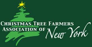 Christmas Tree Farm Near Lincoln Nh by Balsam Acres U0027s Tree Goes To Ny U0027s Lincoln Square Balsam Acres