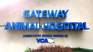 gateway animal clinic veterinarians in staten island ny gateway animal hospital