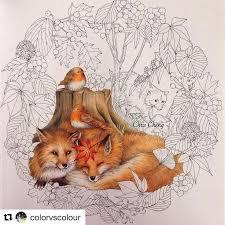 Beautiful Texture On Animal Fur Coloring Pencils Fall In Love Work BooksAdult