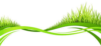 Wavy Lines With Grass Nature Abstract Background
