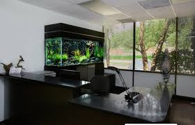 Amazing Aquariums Refresh Home Design With Different Tropical Vibe Creative Cheap Aquarium Decoration Ideas Home Design Planning Top Best Fish Tank Living Room Amazing Simple Of With In 30 Youtube Ding Table Renovation Beautiful Gallery Interior Feng Shui New Custom Bespoke Designer Tanks 40 2016 Emejing Good Coffee Tables For Making The Mural Wonderful Murals Walls Pics Photos