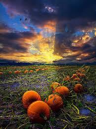 Pumpkin Farms In Wisconsin Dells by 421 Best Wisconsin Landscapes Landmarks Images On Pinterest