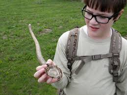 Deer Antler Shed Hunting by The Diy Hunter Having Fun With The Boys U2014 Hunting For Shed Elk