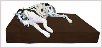 Kh Cool Bed Iii by The Best Dog Bed For The Best Canine Friend In Your Life Best