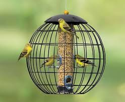 10 best Bird Feeders from The Fat Finch images on Pinterest