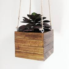 Hanging Planter Succulent Wood Modern Air Plant Holder