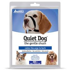 Quiet Small Non Shedding Dog Breeds by Quiet Dog Face Wrap