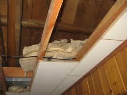 Drop Ceiling Tiles 2x4 Asbestos by Fiberglass Ceiling Tiles Asbestos