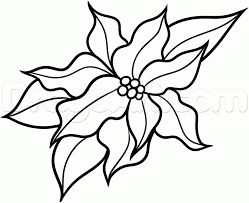 How To Draw A Christmas Flower Step 7