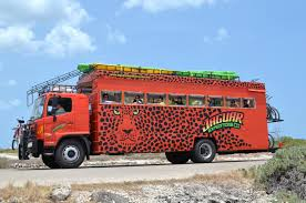 100 Safari Truck Shore Excursion Jaguar Bus Bike Paddle Board Beach BBQ
